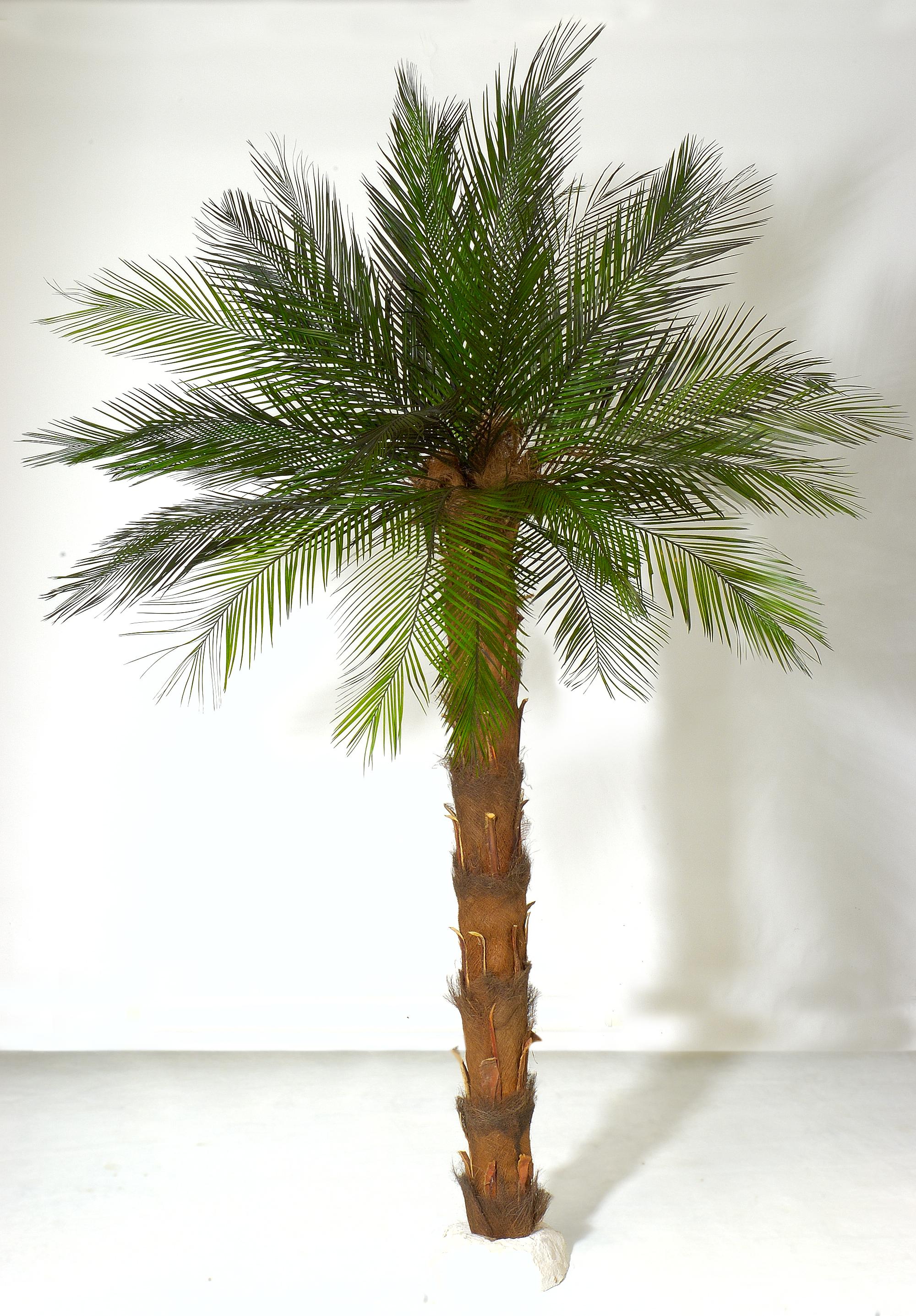Palme basteln groß